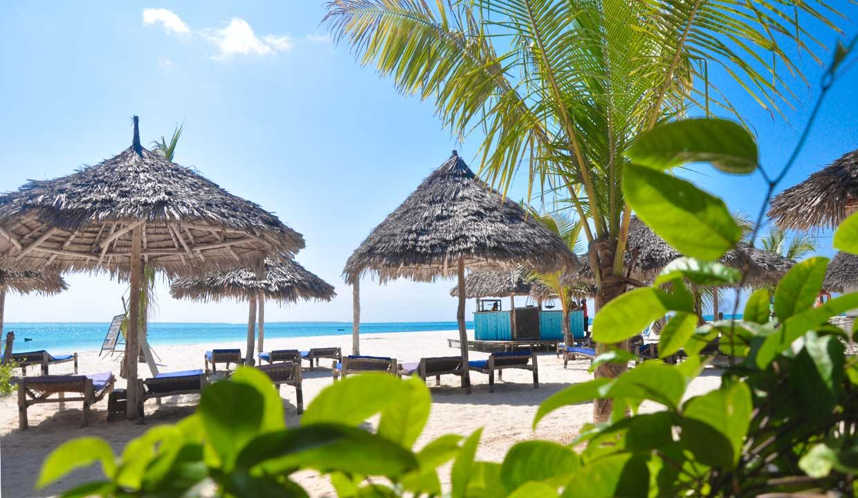 Zanzibar_Palumbokendwa_top