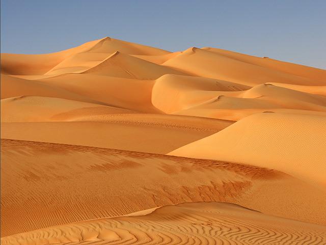 DUBAI 62344456Gallery