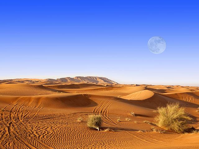 DUBAI 71785186Gallery