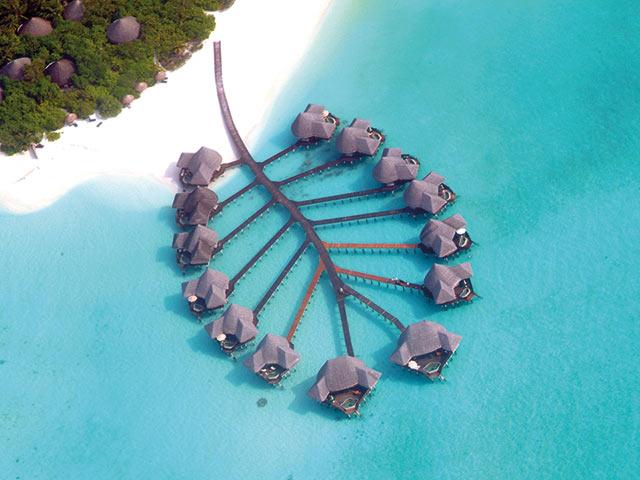 Vacanza Maldive Hotel Coco Palm Atollo Di Baa 0002